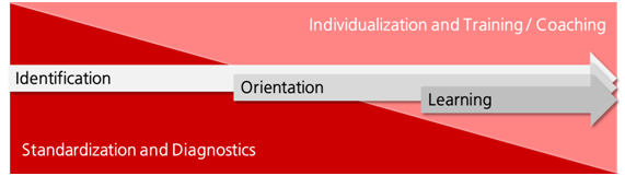 The continuum between standardized diagnostics and individual training and coaching elements
